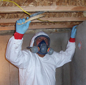 Atlanta Mold Testing and Inspections